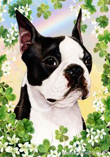 Boston Terrier St Patrick S Day Flag Furrypartners