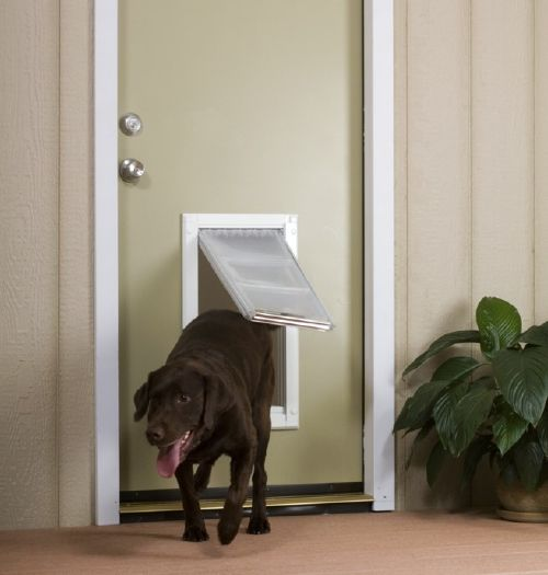 Ordinaire ... Endura Flap Dog Door For Doors Large ...