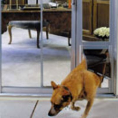 Endura Flap Quick Panel Iii Patio Pet Door Furrypartners