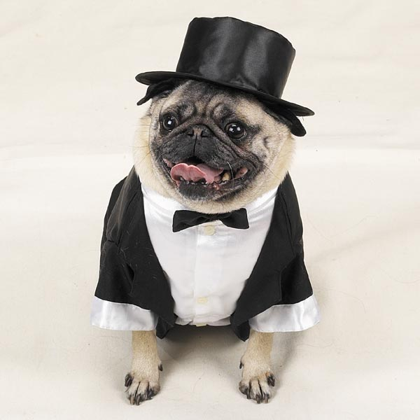 Tux with Tails and Top Hat Dog Costume - Furrypartners