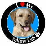 Yellow Labrador Circle Magnet